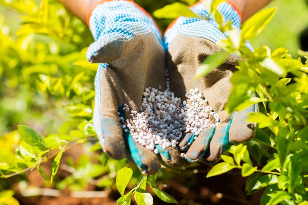 fertilizer3