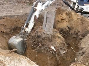 Stump Removal Mulch