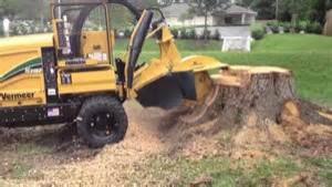 Stump Grinding Tallahassee